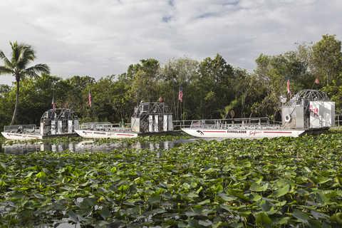 Depuis Fort Lauderdale : excursion dans les Everglades