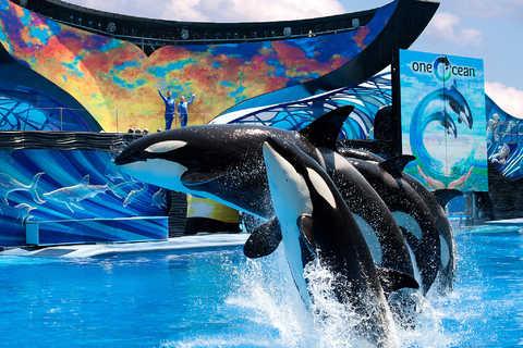SeaWorld à Orlando