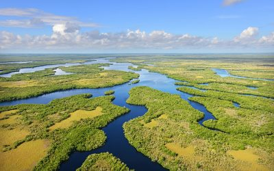 Parc national des Everglades